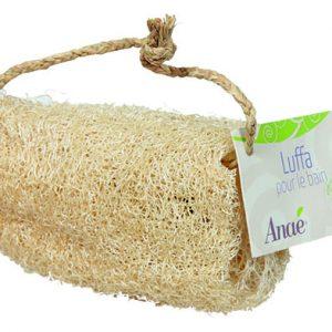 Luffa – Esponja Vegetal