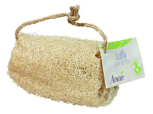 luffa - esponja vegetal